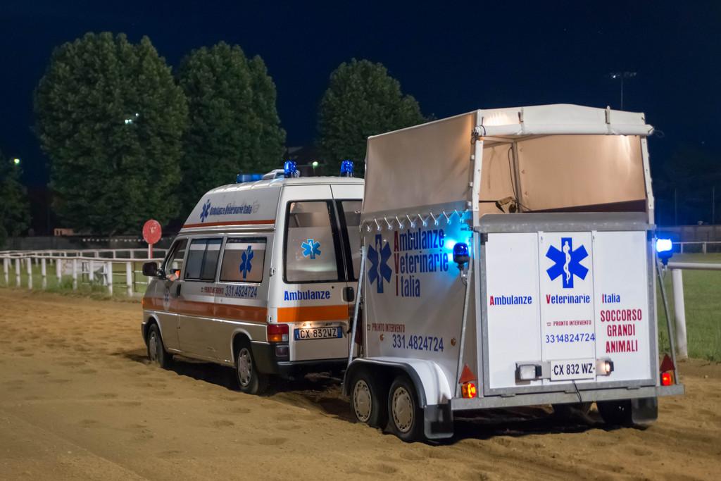 Assistenza a gara ippica con ambulanza veterinaria